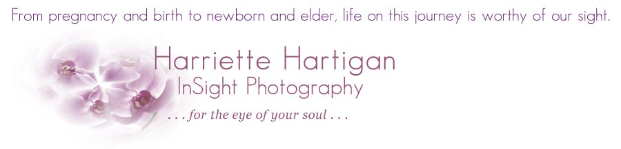 Harriette Hartigan/InSight Photography